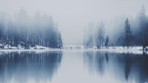 Misty Lake HD Wallpaper