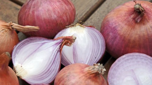 Onions HD Wallpaper