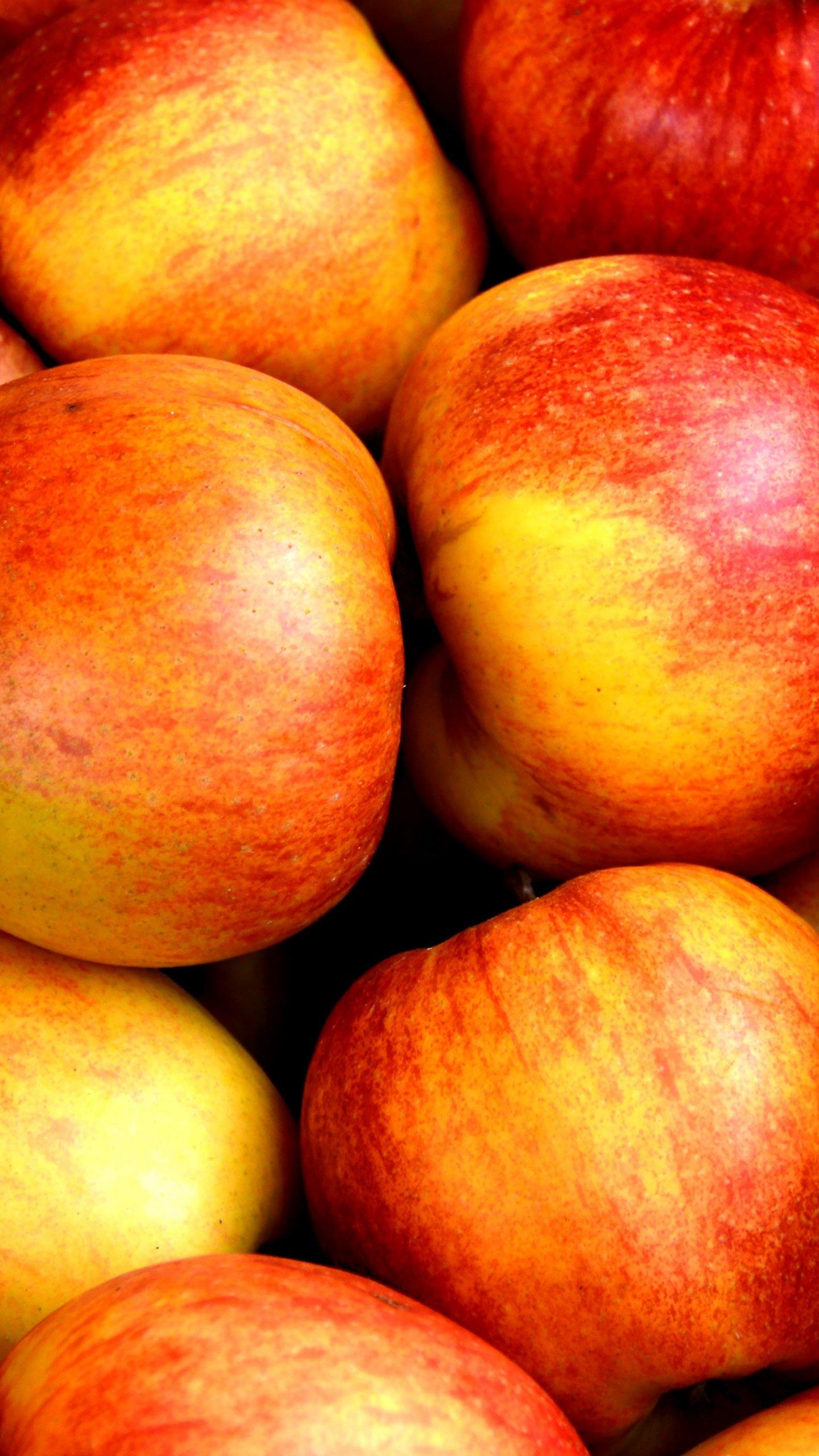 fresh crisp apples wallpaper - mobile & desktop background
