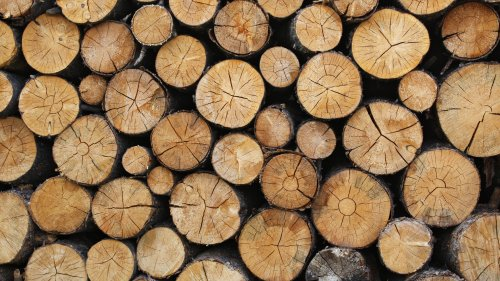 Wooden Logs Texture Wallpaper