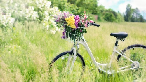 Romantic Bicycle in Meadow HD Wallpaper