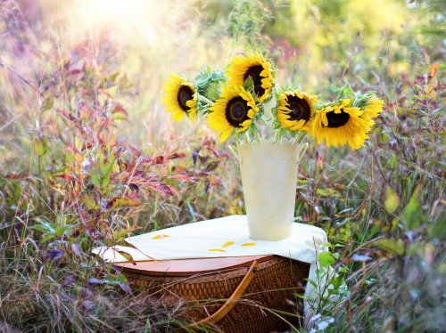 Romantic Picnic Basket & Sunflowers