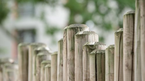 Wood Fence HD Wallpaper