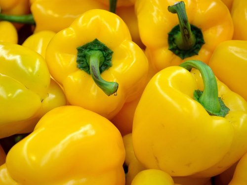 Yellow Bell Pepper  Wallpaper
