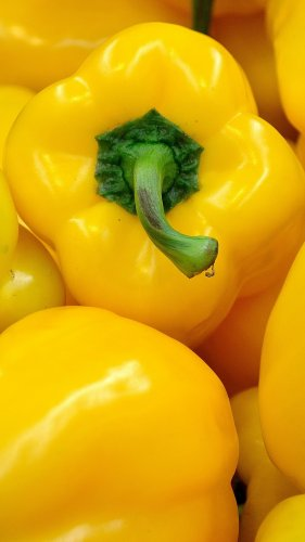 Yellow Bell Pepper Mobile Wallpaper