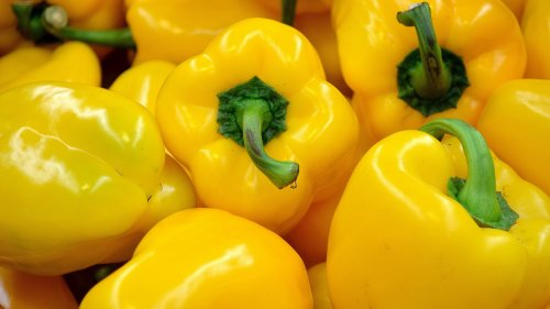 Yellow Bell Pepper HD Wallpaper